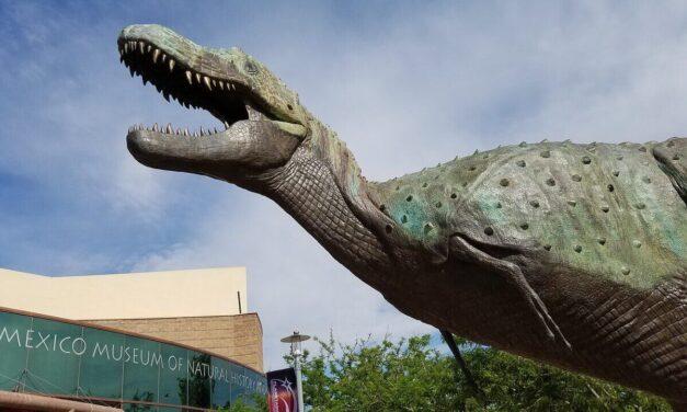 Comment devenir paléontologue ?