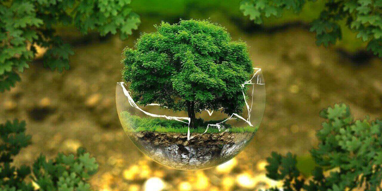 Comment devenir un responsable de la santé environnementale ?